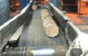 Belterra Corporation Forestry Industry